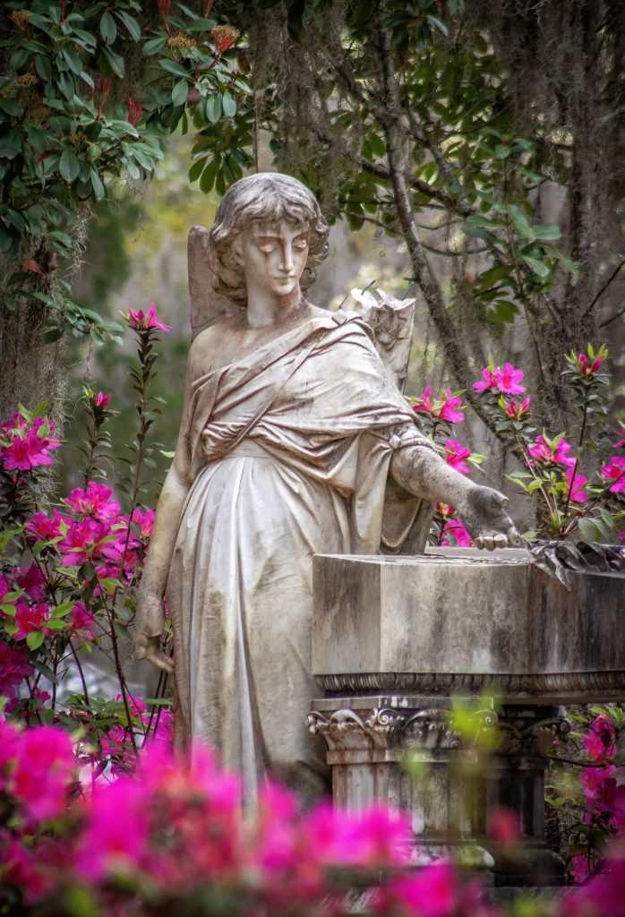 A hauntingly beautiful statue surrounded by blooming pink azaleas in Bonaventure Cemetery